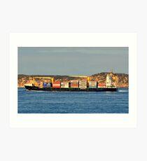 Vega Gotland Art Print