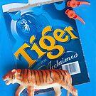 Orange Tiger by Sue O'Malley