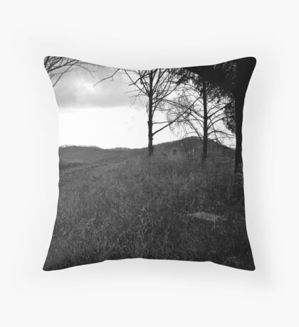 M6 Throw Pillow