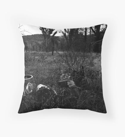 M10-1 Throw Pillow