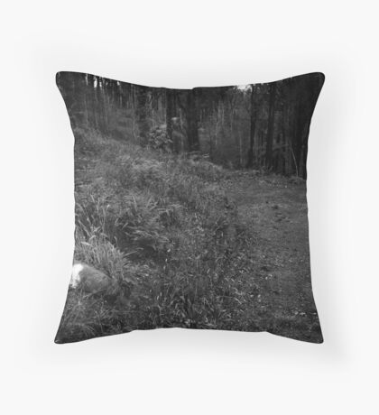 M21 Throw Pillow