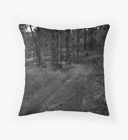 M14 Throw Pillow
