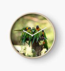 Rainbow Lorikeets Clock