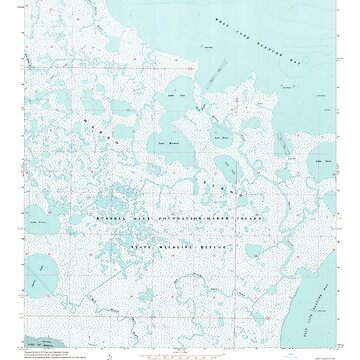 USGS TOPO Map Louisiana LA Bayou Blanc 331380 1968 24000 by wetdryvac