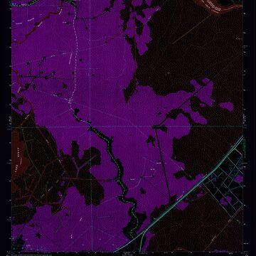 USGS TOPO Map Louisiana LA Bayou Boeuf 331376 1962 24000 Inverted by wetdryvac