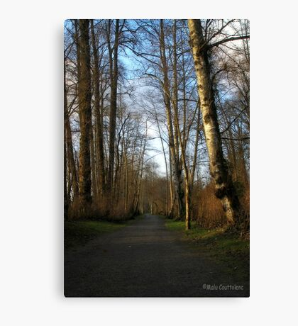 Relaxing path Canvas Print