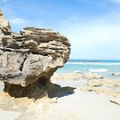 Beach Mushroom by Emma Howell