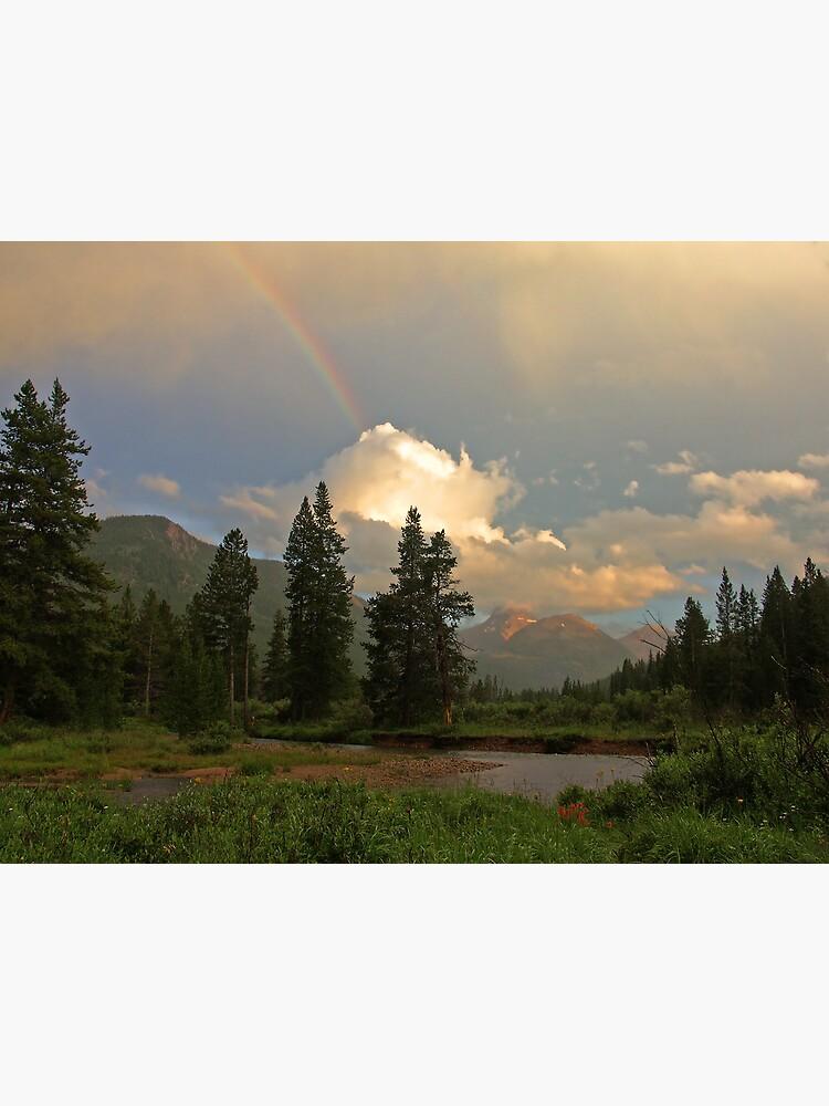 Rainbow Light by LumenLux