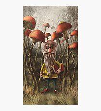 Aalbert Van Edeborg from Mushroom Mountains Photographic Print