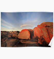 Early Morning, Bay Of Fires,Tasmania Poster