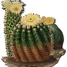 Yellow flower cactus vintage sketch by Epic Splash Creations