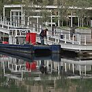 Canal cleaner by awefaul