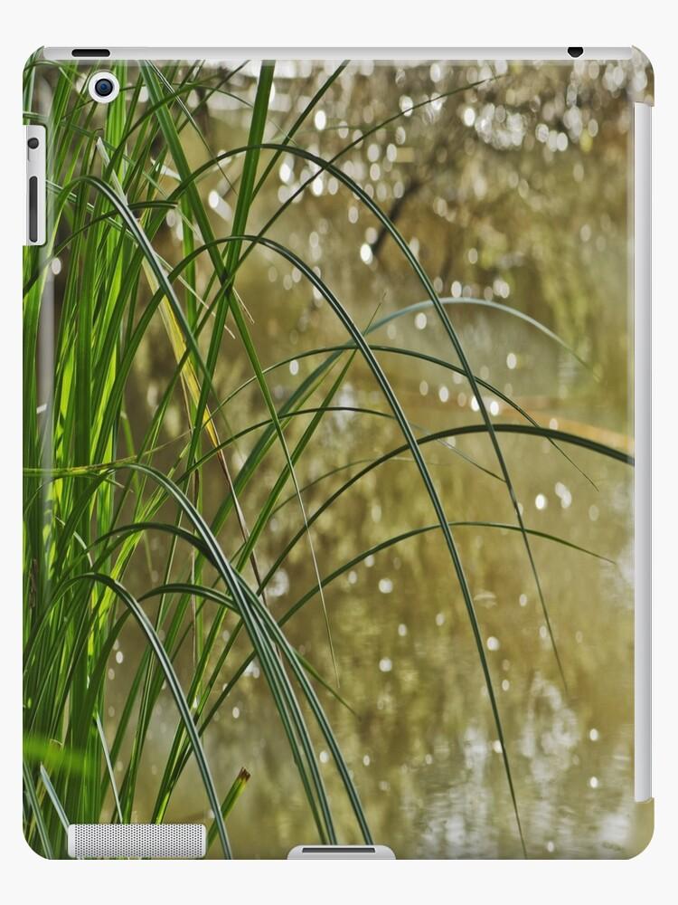 Water Reeds by Rdiepenheimfoto