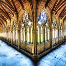 Lincoln Cathedral Cloisters 2  by Paul Thompson Photography