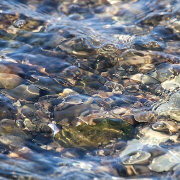 Ebbing Tide 2 by wselander