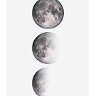 Moon Phases  by banginT