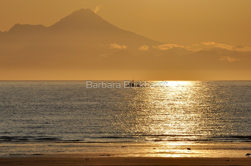 Gold  in Alaska by Barbara Burkhardt