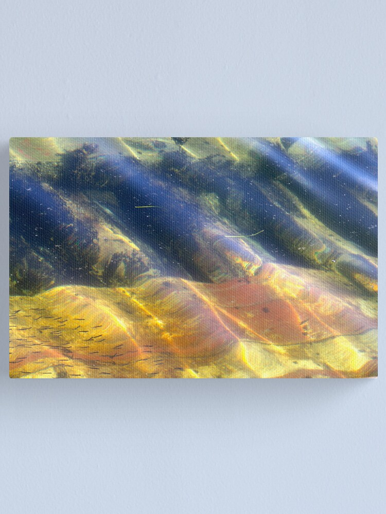 Alternate view of Little Fish Canvas Print