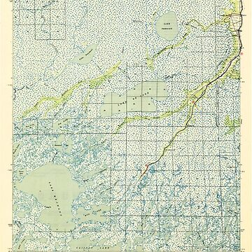 USGS TOPO Map Louisiana LA Bayou Du Large 334265 1944 62500 by wetdryvac