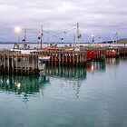 Stanley Harbour, Tasmania by Christine Smith