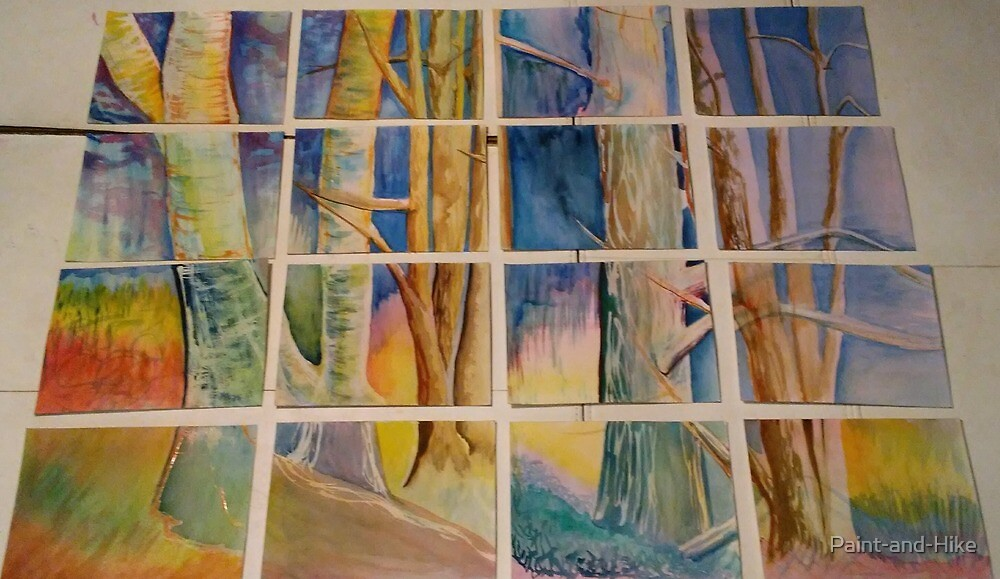 Grid of Trees. Picture Window by Paint-and-Hike