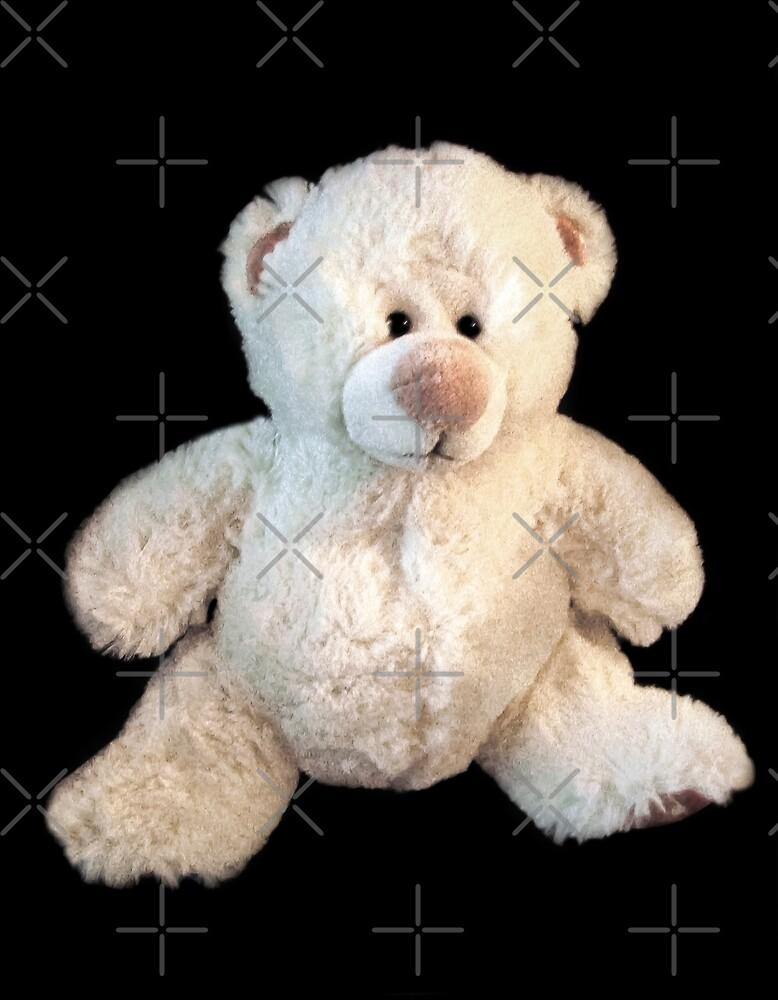 Baby Bear by Heather Friedman