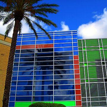 Florida Colors by susanne49