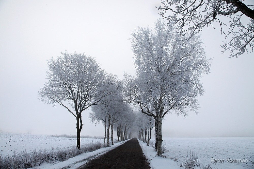 Winter by Peter Voerman