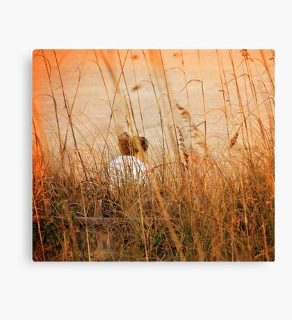 Flirting with Summer Canvas Print