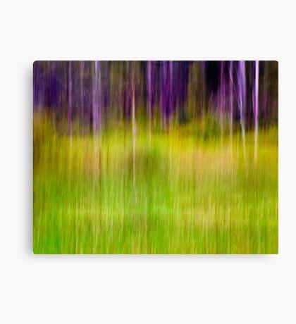 Mitchell Park ~ the impressionist's view I Canvas Print