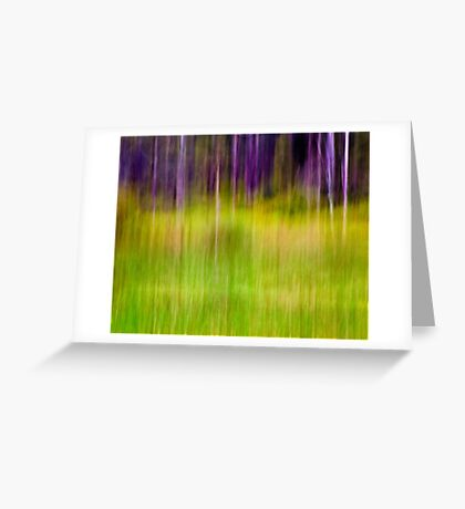 Mitchell Park ~ the impressionist's view I Greeting Card