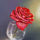 Red rose by Victoria  _Ts