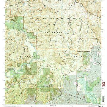 USGS TOPO Map Louisiana LA Bayou Livrogne 331388 2003 24000 by wetdryvac