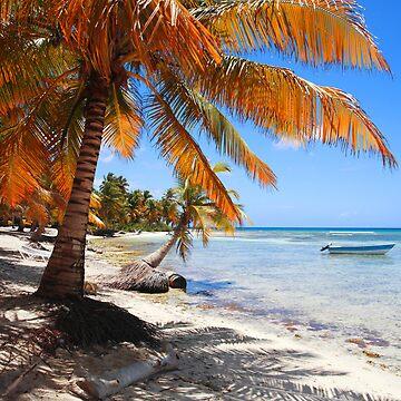 Caribbean beach with boat by diktattoor
