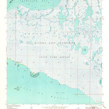 USGS TOPO Map Louisiana LA Bayou Lucien 331360 1951 24000 by wetdryvac