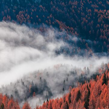 Cloudy autumn day in the italian alps by zakaz86