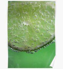 Lime Tingle Poster