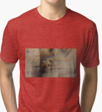 Argentic Alchemy Angels n°3 Tri-blend T-Shirt
