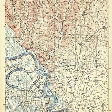 USGS TOPO Map Louisiana LA Bayou Sara 335202 1906 125000 by wetdryvac