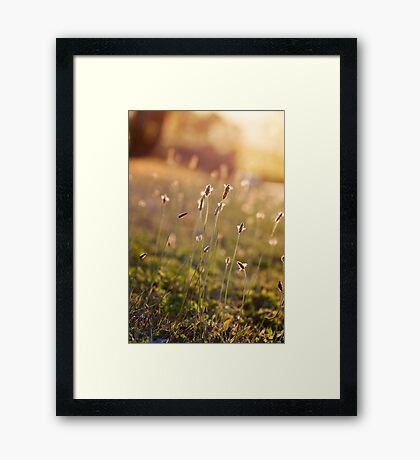 ~ visions of inspiration are never far away ~ Framed Print
