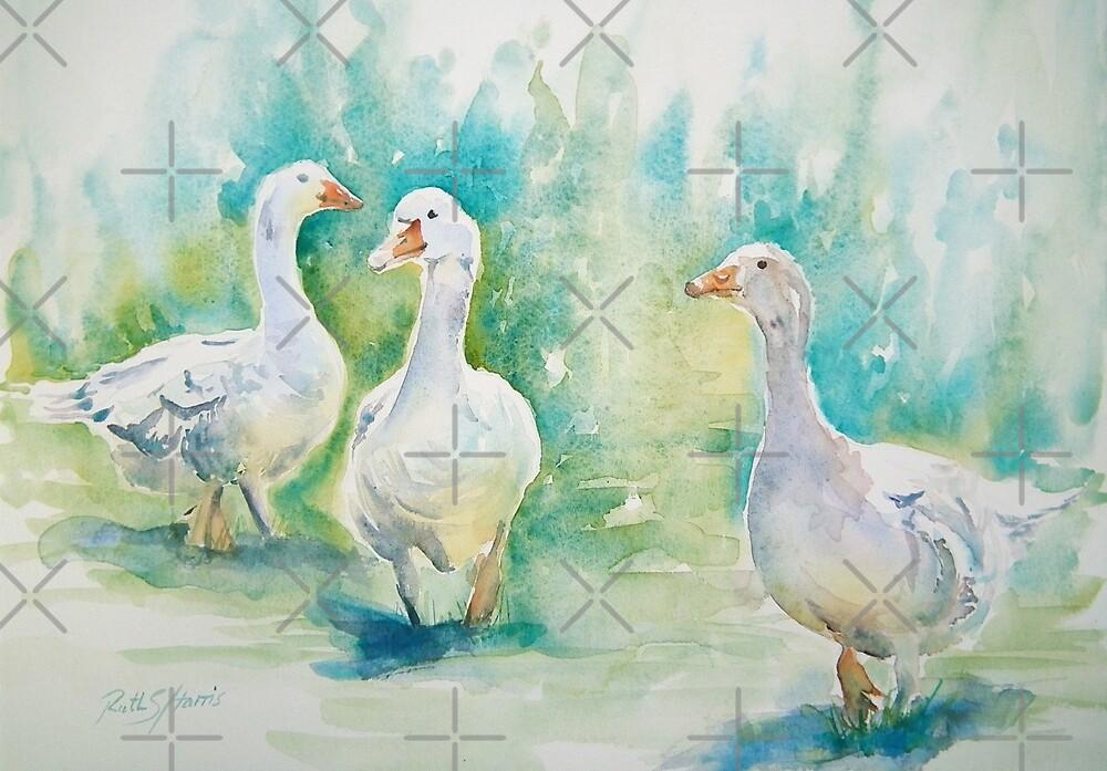 Three Geese by Ruth S Harris