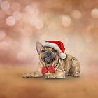 Drawing dog French Bulldog in red hat of Santa Claus  by bonidog