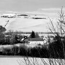 Scottish Winter Scene... by DoreenPhillips