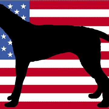 american english coonhound silhouette on flag by marasdaughter