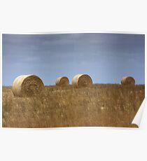 Rural Landscape Poster