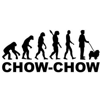Chow-chow evolution by Designzz
