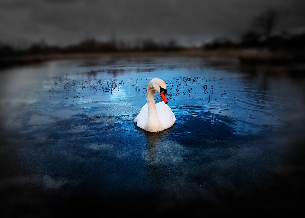 Left Behind by Svetlana Sewell