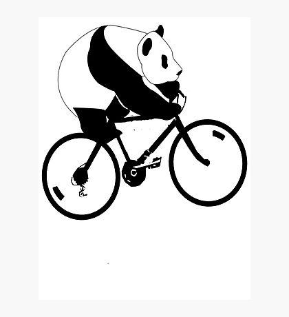 Panda Down Under 2 Photographic Print