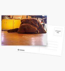 Flump Postcards