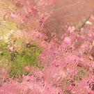 Pink Rain by Lynn Wiles